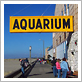 Seaside Aquarium