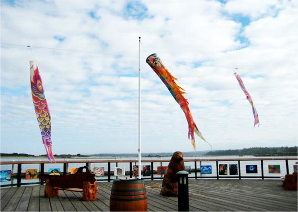 Fun Kites